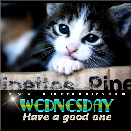 Wednesday have a good one