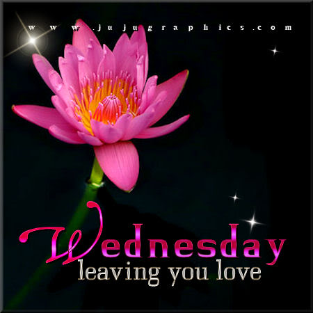 Wednesday leaving you love