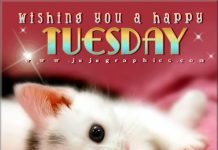 Wishing You A Happy Tuesday