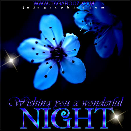 Wishing you a wonderful night 2