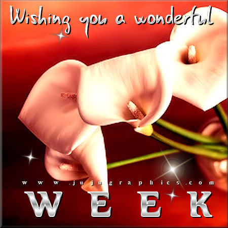 Wishing you a wonderful week 2