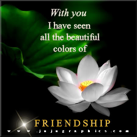 With you I have seen all the beautiful colors of friendship