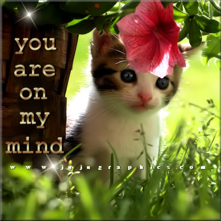 You are on my mind 4