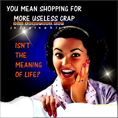 You mean shopping for useless crap isnt the meaning of life
