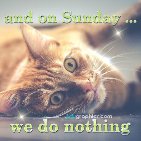 And on Sunday we do nothing