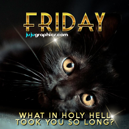 Friday what in holy hello took you so long