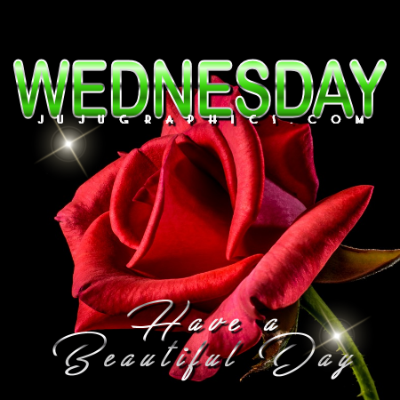 Wednesday have a beautiful day