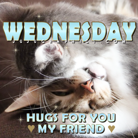 Wednesday hugs for you my friend