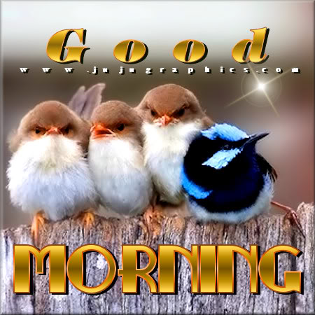 Good morning 99 - Graphics, quotes, comments, images