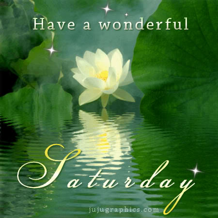 Have a wonderful Saturday 10 - Graphics, quotes, comments