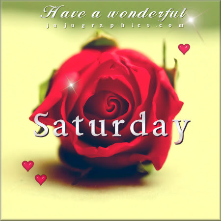 Have a wonderful Saturday red rose - Graphics, quotes