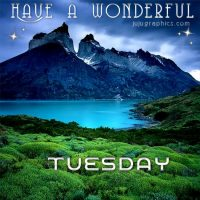 Have a wonderful Tuesday (2)