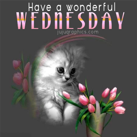 Have a wonderful Wednesday 2 - Graphics, quotes, comments