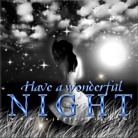 Have A Wonderful Night 10 Graphics Quotes Comments