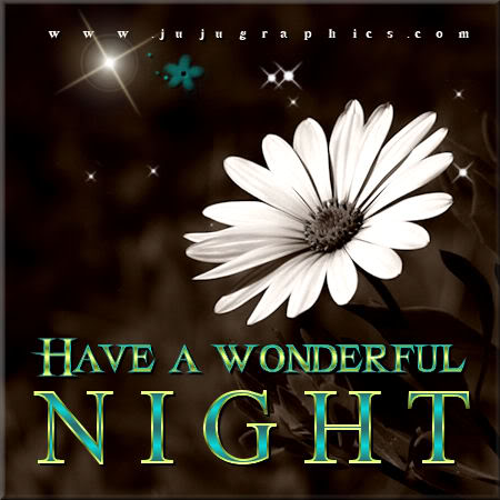 Have a wonderful night 11 - Graphics, quotes, comments