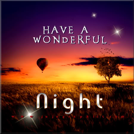 Have a wonderful night 6 - Graphics, quotes, comments