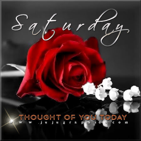 Saturday thought of you today red rose - Graphics, quotes