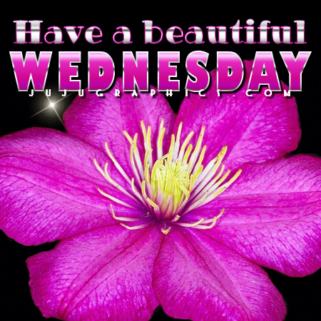 Have a beautiful Wednesday - Graphics, quotes, comments ...