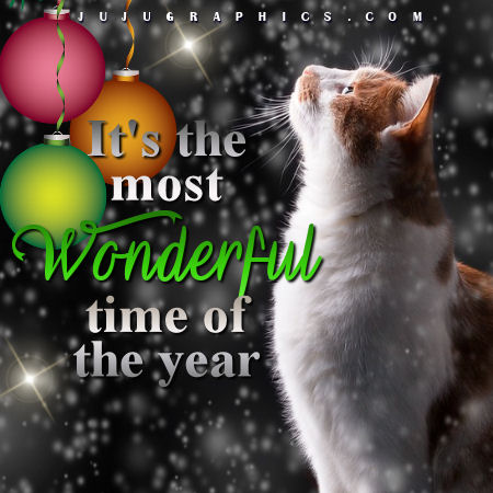 its the most wonderful time of the year graphics quotes
